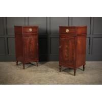 Tall Pair of Regency Mahogany Pedestal Cabinets